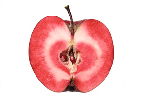 Apple Red Love 255mm Pot