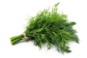 Dill - Boouquet
