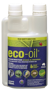 Eco-oil 250ml Concentrate
