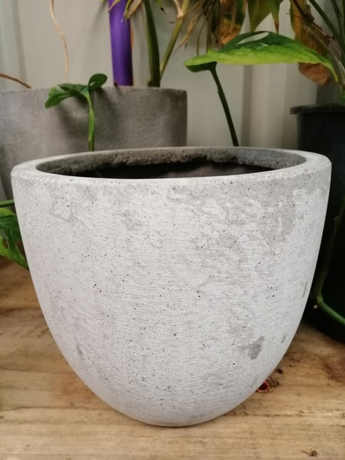 Lightweight grey egg pot
