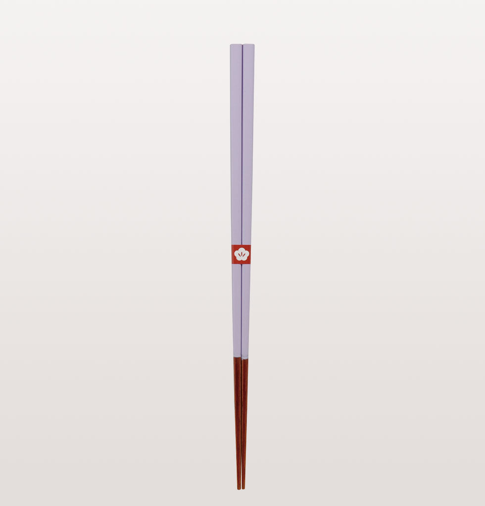 Japanese coloured chopstick set £47.