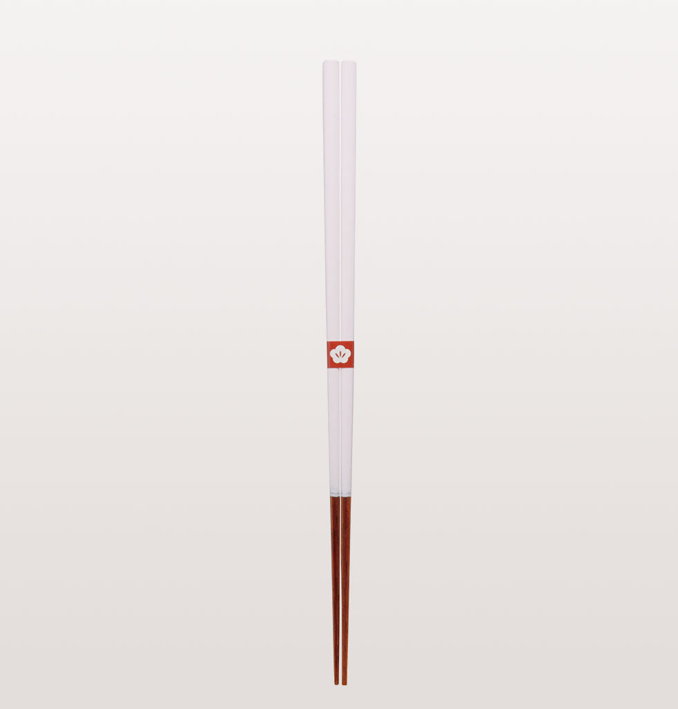 JAPANESE COLOURED CHOPSTICKS