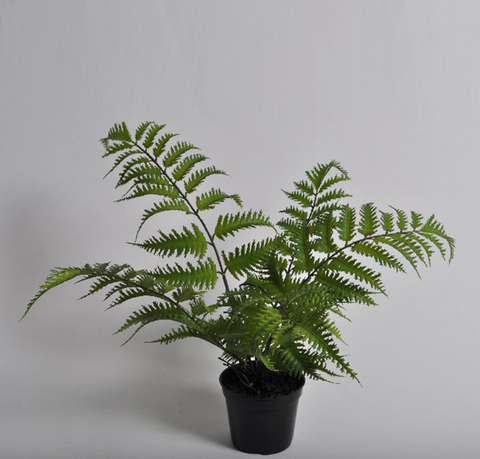 SMALL FERN FAUX PLANT