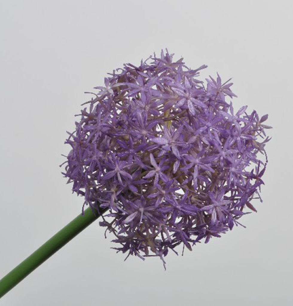 FAUX PURPLE ALLIUM STEM