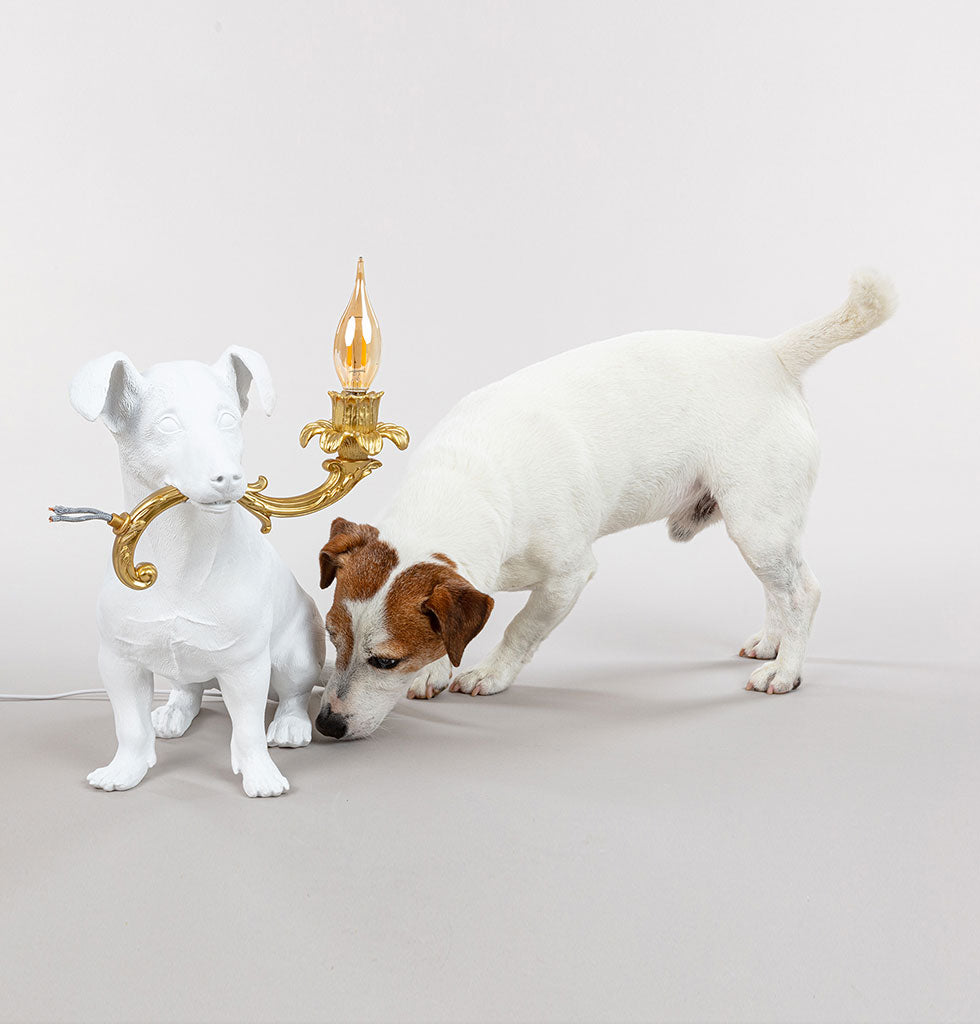 Sit Rio! This fun character dog lamp is designed as a tribute to the much loved Jack Russell dog, Rio of the Seletti family.  Rio is quite the character and can be seen tearing around their design showroom in Italy. The life-size replica white dog lamp is sitting with the lamp of a gold chandelier arm, complete with torn wires proudly in his mouth.  Designed by Italian design legend, Marcantonio this fun lamp is sure to become your own family favourite.