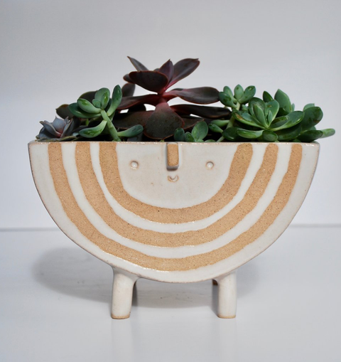 RAINBOW PLANTER BIG