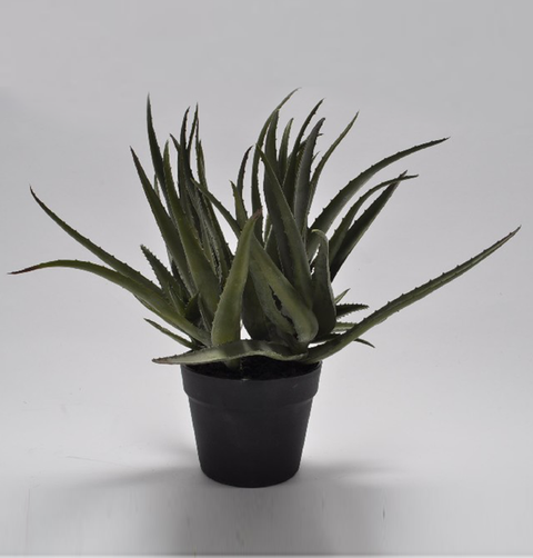 AGAVE FAUX PLANT