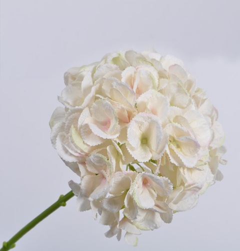 Professional quality faux real feel luxury fake plants and flowers hydrangea stem white pink mightylinksfo