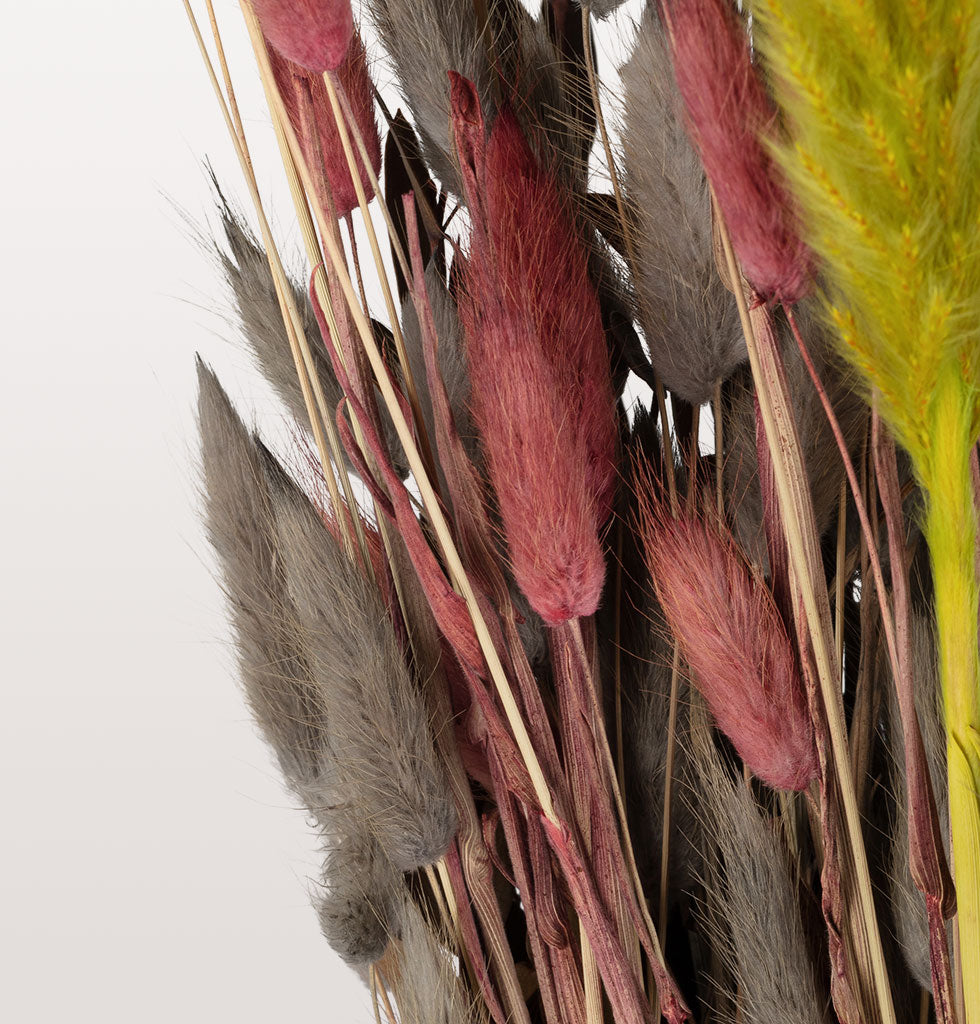 W.A.GREEN | MADAM STOLTZ | Dried pink dyed bunny tails. H70cm. Sold in 50g bunch of stems. £8.25 wagreen.co.uk
