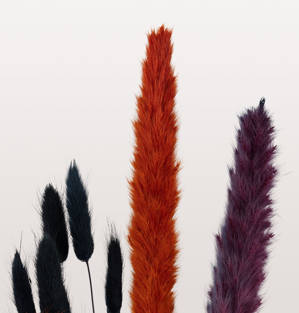 Forever flowers are the secret ingredient to creating that instagram ready home and these purple fox tails are that unique pop of colour you have been waiting for. Dyed in striking purple these really pop when mixed with neutral grasses.