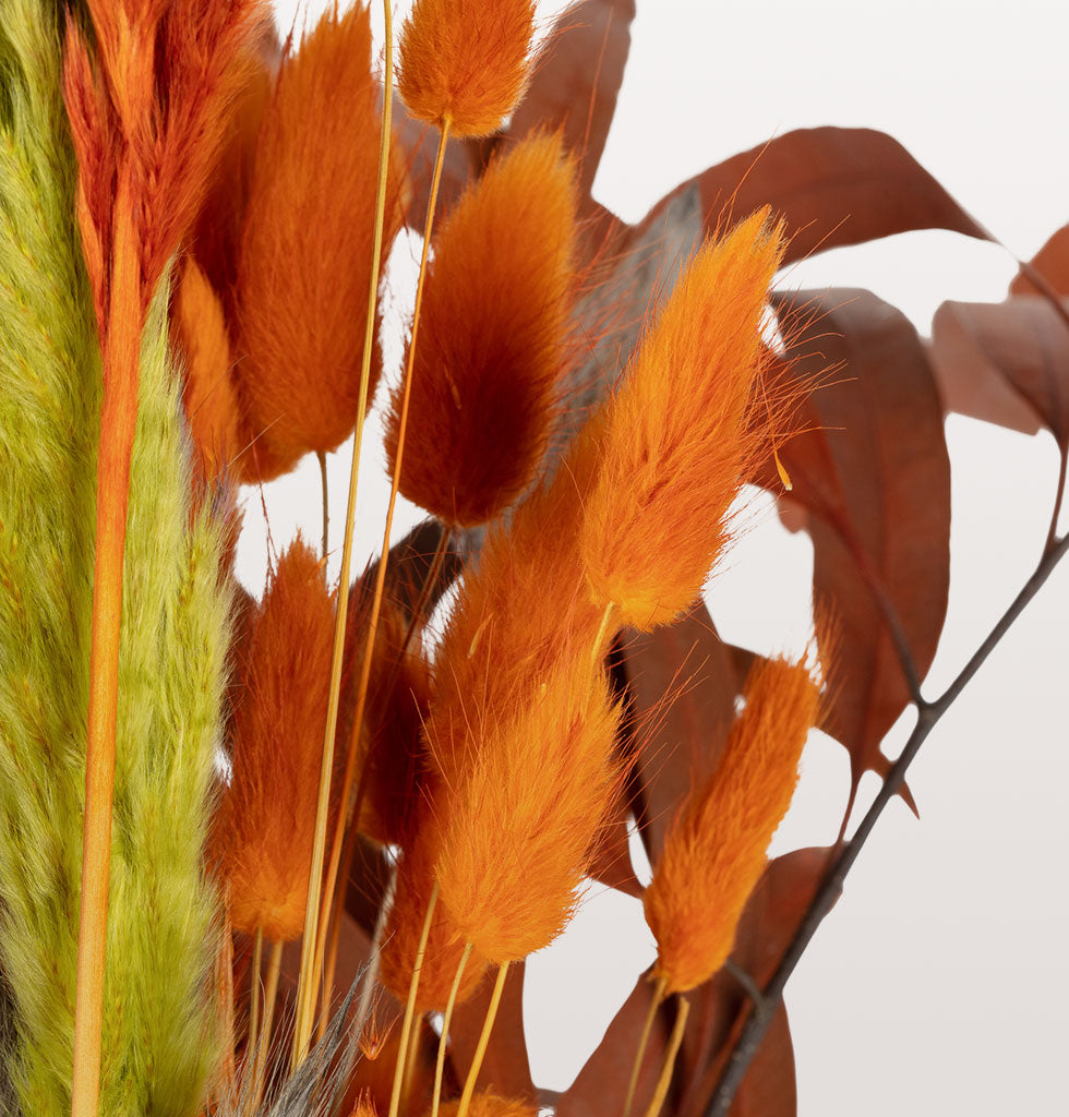W.A.GREEN | MADAM STOLTZ | Forever flowers are the secret ingredient to creating that Instagram ready home and these orange bunny tails are that unique pop of colour you have been waiting for. In a gorgeous warm orange shade that is perfect for cosy nights in. £12 wagreen.co.uk