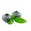 Hangsen Blueberry E-Liquid