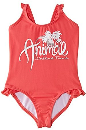 Animal Girls Paradise Swimsuit
