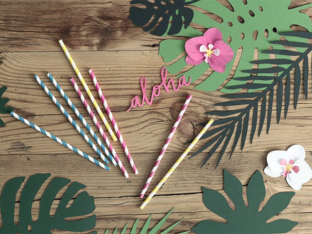Yellow - White Paper Straws (10 pcs)