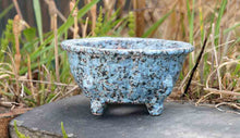 Sky Blue with Black Dots Flower Shaped Bonsai Pot by Shuuhou +++ Shipping Free
