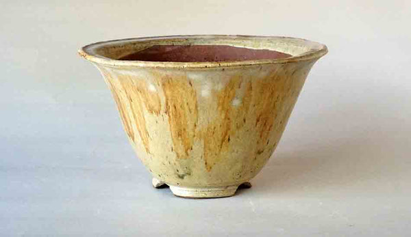 Shuuhou Round Bonsai Pot in Sansai Glaze 7.2