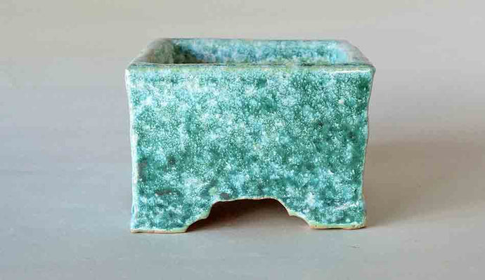 Square Bonsai Pot in Moss Green Glaze by Shuuhou