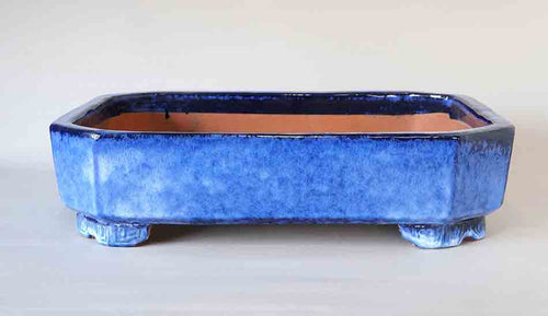 Blue & White Rectangle Bonsai Pot with Meander Feet