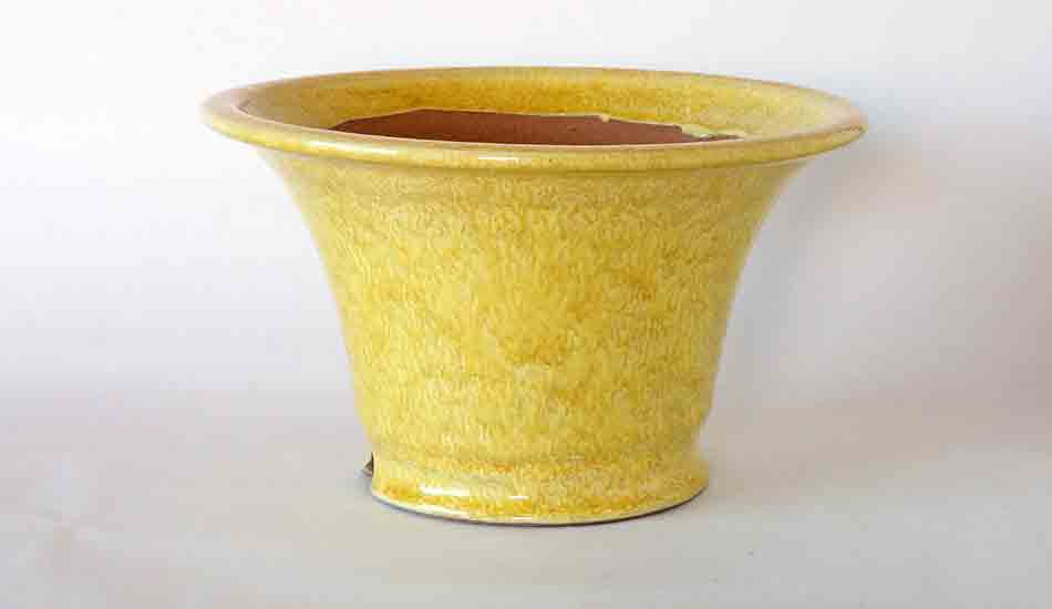 Running Yellow Glazed Bonsai Pot by Shuuhou