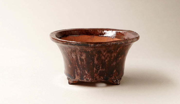 "Oval Bonsai Pot in Avanturine Glaze by Shuuhou 6.1""(15.7cm)+++Shipping Free!"