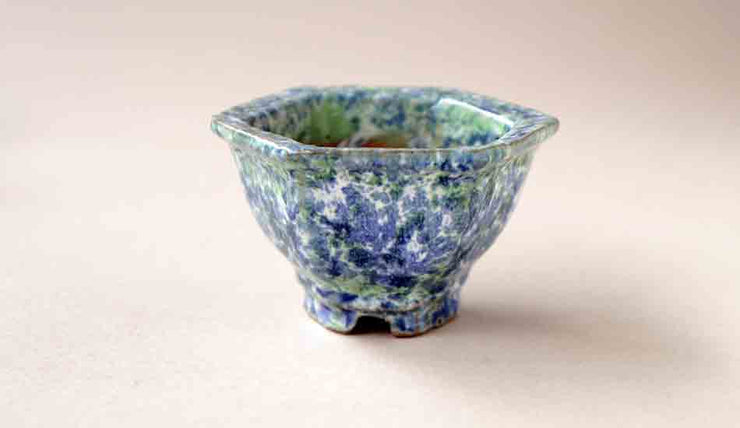 Miniature Hexagonal Bonsai Pot in Green & Blue by Shuuhou+++Shipping Free