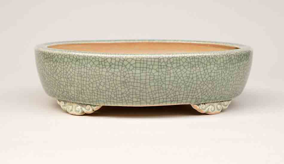 Oval bonsai pot in Celadon with Cloud Feet, 7.0-Inch +++Shipping Free!!!