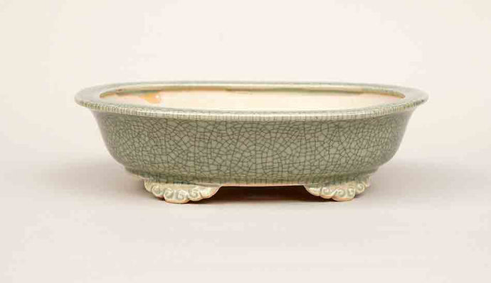 Eimei Oval Bonsai Pot with Rim, 7.5-Inch Celadon +++Shipping Free!!!