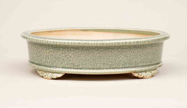 Eimei Oval Bonsai Pot in Celadon 7.5 Inch +++Shipping Free!!!