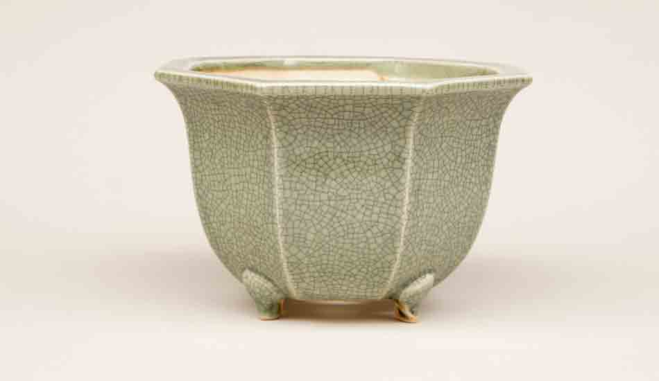 Eimei Octagonal Bonsai Pot in Celadon +++Shipping Free!!!