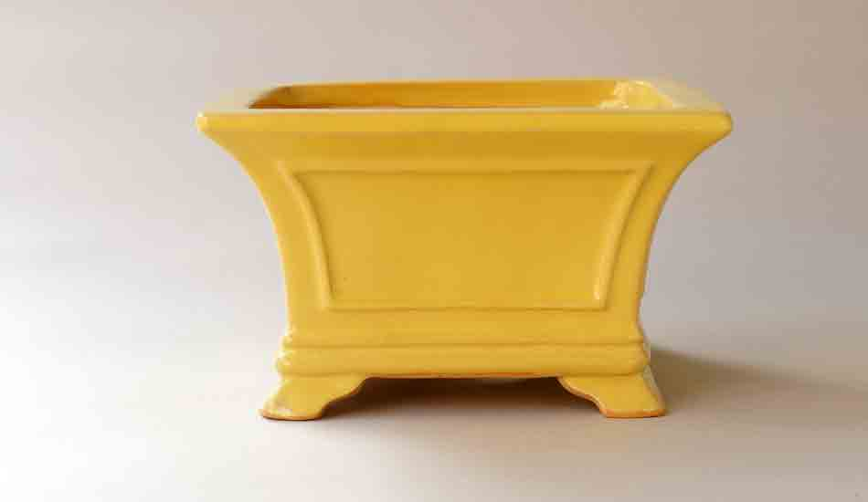 Eimei Square Bonsai Pot in Yellow +++Shipping Free!!!
