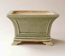 Eimei Square Bonsai Pot in Celadon +++Shipping Free!!!