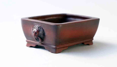 Bigei Unglazed Rectangle Bonsai Pot with Lion Face 3.9