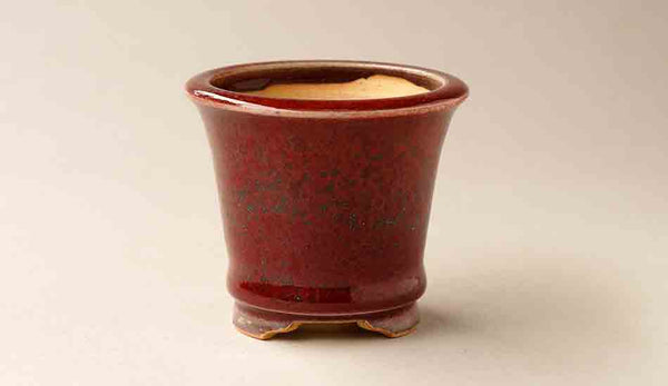 Eimei Round Bonsai Pot in Deep Red with Blue Dots 2.8