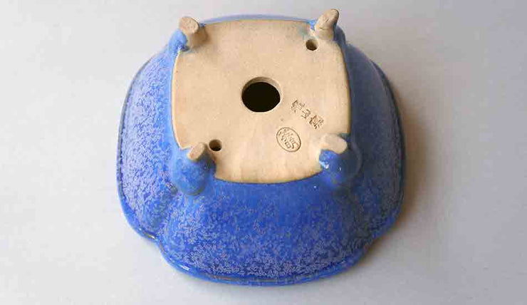 Eimei Square Bonsai Pot in Blue Glaze +++Shipping Free!