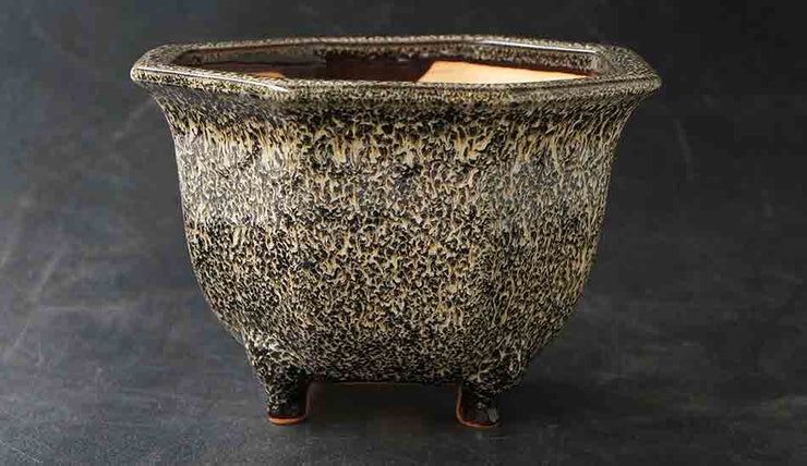 Eimei Octagonal Bonsai Pot in Namako Glaze +++Shipping Free!!!