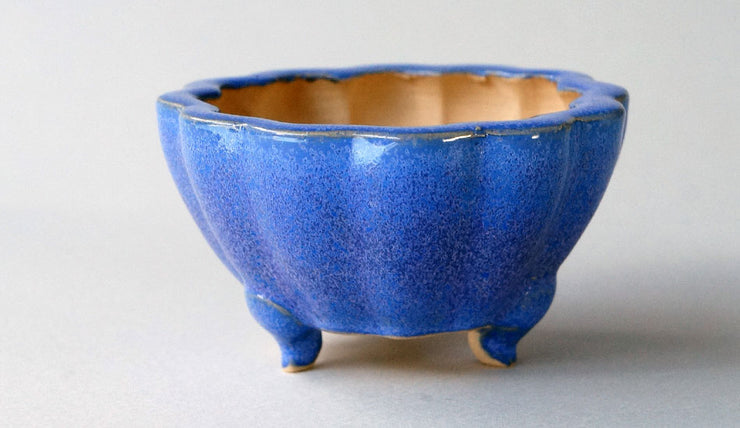 Eimei Flower Shaped Bonsai Pot in Blue Glaze+++Shipping Free!