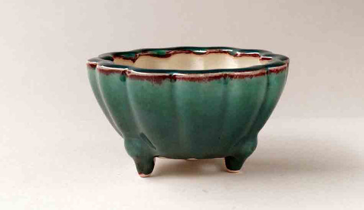 Eimei Flower Shaped Bonsai Pot in Emerald Green +++Shipping Free!