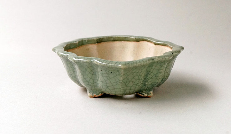 "Eimei Lotus Bonsai Pot in Celadon, 6.8""(17.5cm) +++Shipping Free!!!"