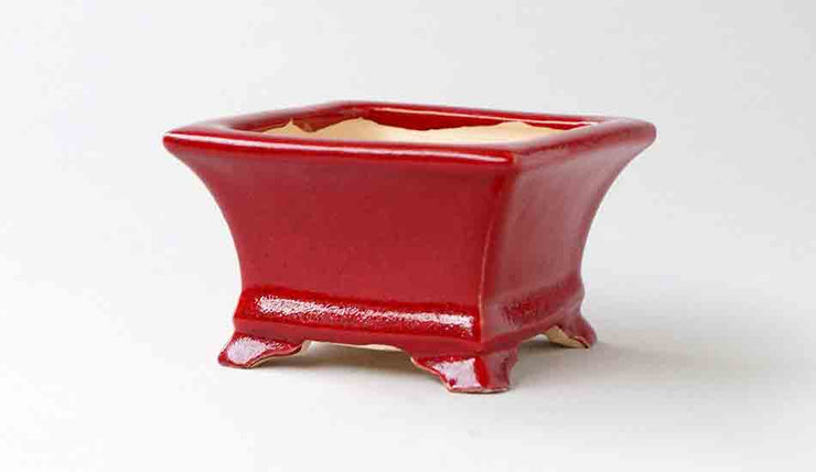 Eimei Square Bonsai Pot in Red Glaze+++Shipping Free