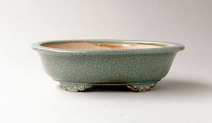 Eimei Oval Bonsai Pot with Rim, 7.5-Inch Celadon +++Shipping Free