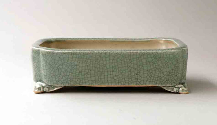 Eimei Rectangle Celadon Bonsai Pot with Corner Cutting 7,5 Inch +++Shipping Free