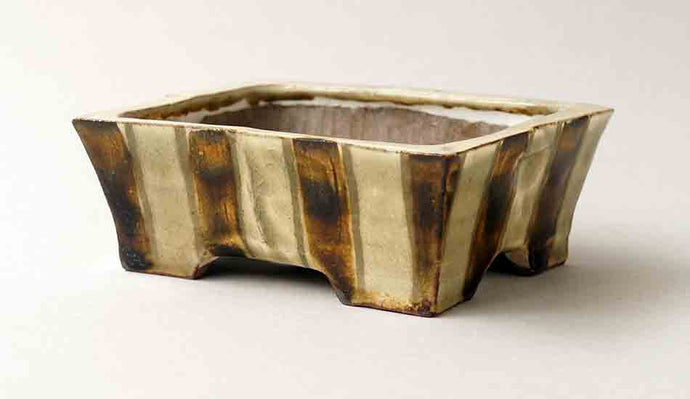 Gassan Rectangle Bonsai Pot with Brown & White Stripes