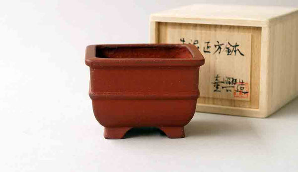 Ikko Unglazed Square Bonsai Pot
