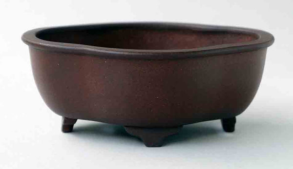 IKKO Unglazed Mokko Shaped Bonsai Pot in Dark Brown