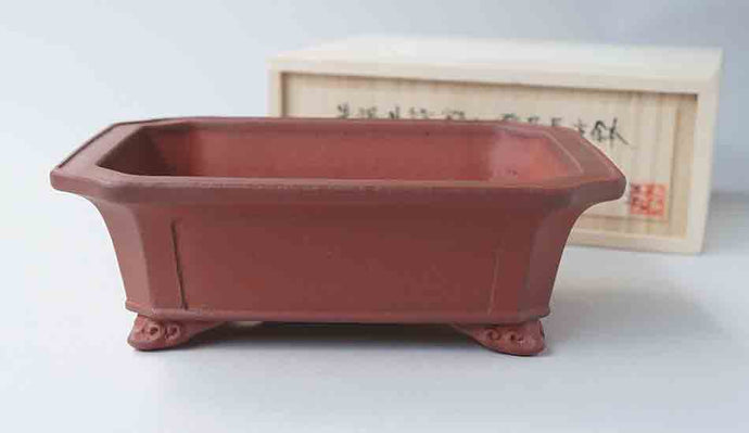 IKKO Unglazed Rectangle Bonsai Pot 7.0