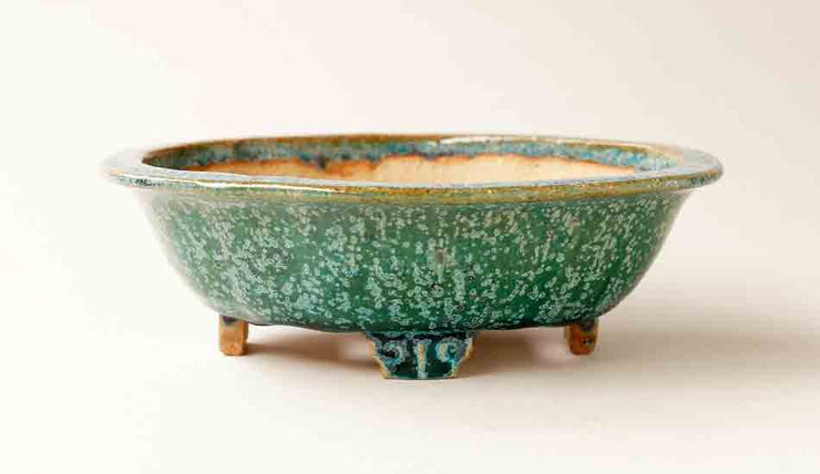 Juko Bonsai Pot in Oribe with Blue Patina +++Shipping Free