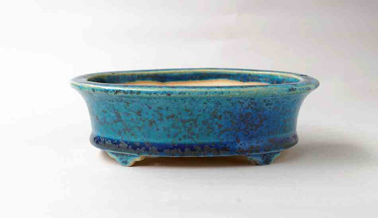 Juko Oval Bonsai Pot in Blue Oribe Glaze