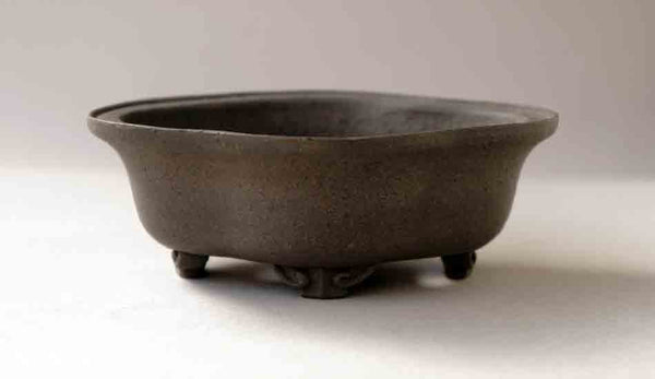 Reifo Unglazed Mokko Shaped Bonsai Pot with Gray Clay