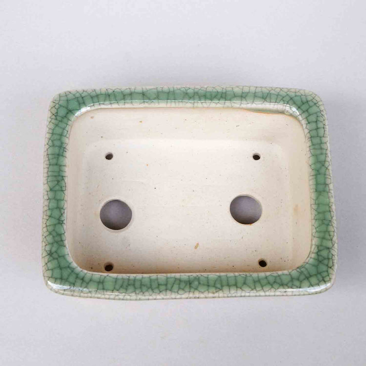 Rectangle Bonsai Pot in Celadon, 4.75-Inch +++Shipping Free!!!