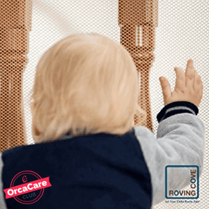 Indoor & Outdoor Safety Net - orca care